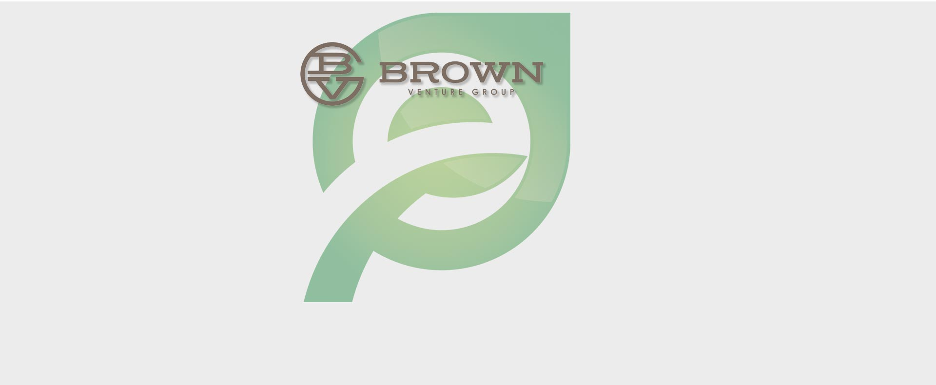 Brown Venture Group, LLC